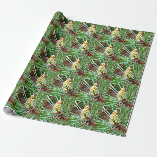 Pine cone tree needles photograph wrapping paper