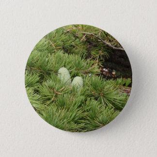 Pine Cones 2 Inch Round Button