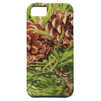 Pine cones case for the iPhone 5