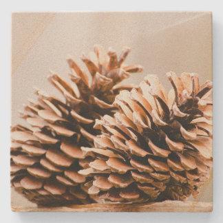 Pine Cones Rustic Country Sandstone Coaster