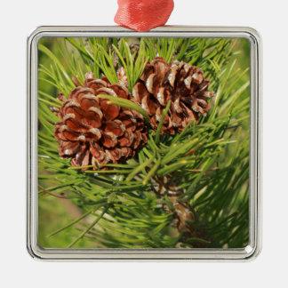 Pine cones Silver-Colored square ornament