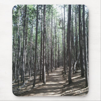 Pine Forest Hiking Trail, Conifer, CO Mouse Pad