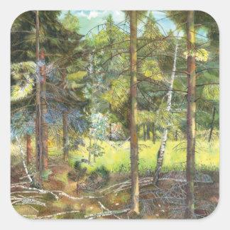 Pine forest square sticker