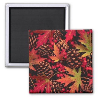 Pine & Leaves Magnet