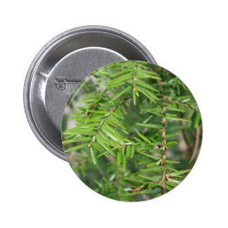 Pine Needles and Branches Buttons