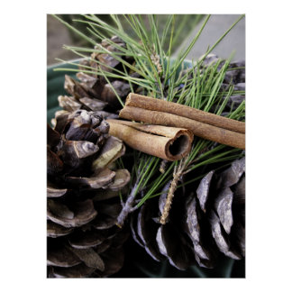 Pine Needles by Cosmotose Poster