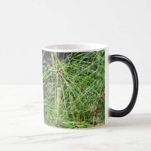 Pine Needles Morphing Mug