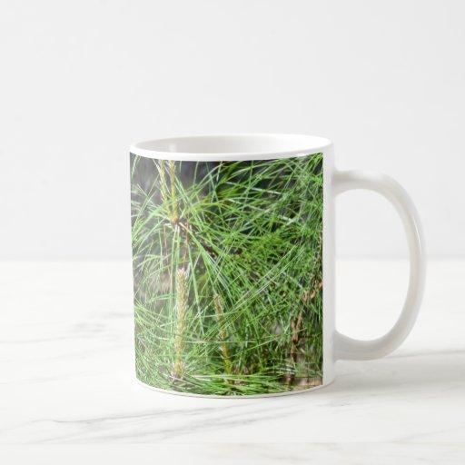 Pine Needles White Mug