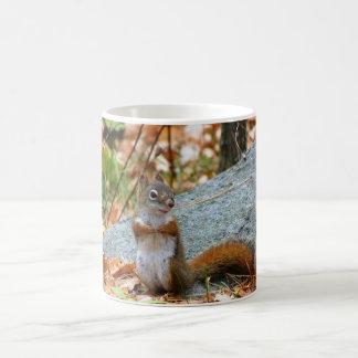 Pine Squirrel Coffee Mug