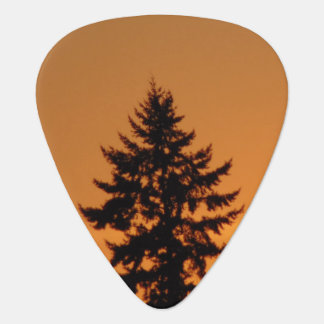 Pine Tree At Sunset Guitar Pick