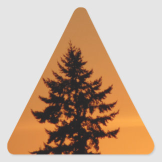 Pine Tree At Sunset Triangle Sticker