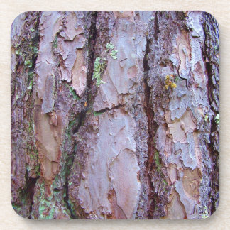 Pine Tree Bark Hard Plastic Coasters