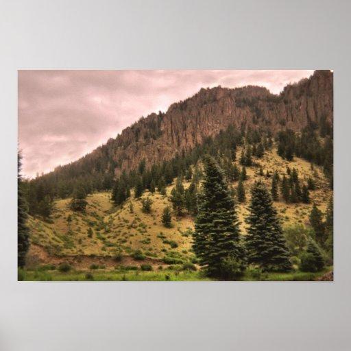 pine tree beauty print