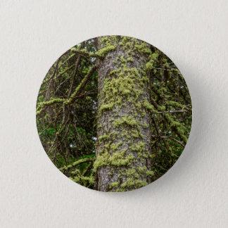 Pine_Tree_Moss 2 Inch Round Button