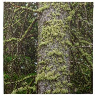 Pine_Tree_Moss Napkin
