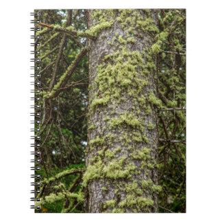 Pine_Tree_Moss Notebook