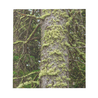 Pine_Tree_Moss Notepad