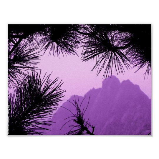 Pine Tree Mountain Poster