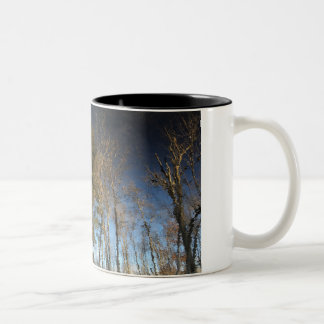 Pine Tree Reflection Mug