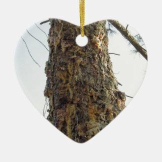 Pine tree resin on the trunk ceramic heart ornament
