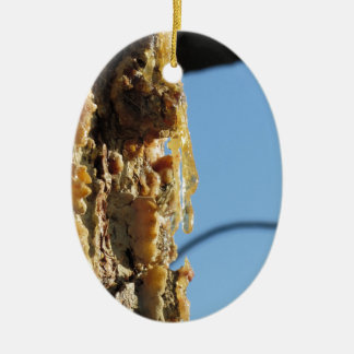 Pine tree resin on the trunk ceramic oval ornament