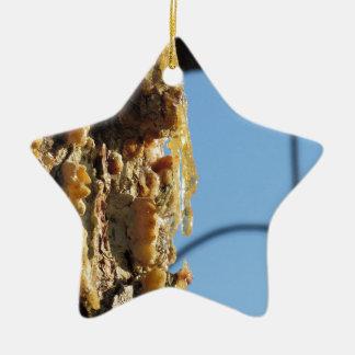 Pine tree resin on the trunk ceramic star ornament