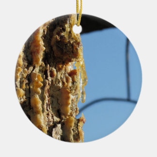 Pine tree resin on the trunk round ceramic ornament