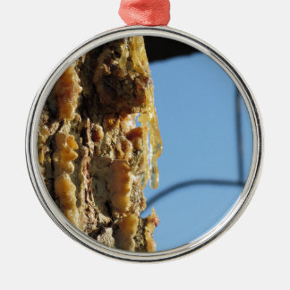 Pine tree resin on the trunk Silver-Colored round ornament