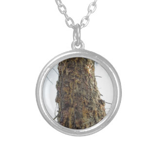Pine tree resin on the trunk silver plated necklace