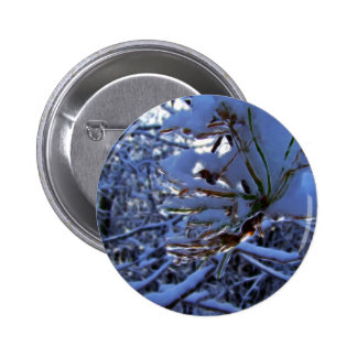 Pine tree with snow and light reflecting on a need 2 inch round button