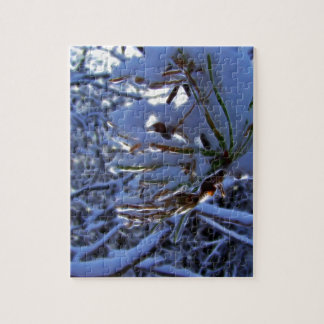 Pine tree with snow and light reflecting on a need jigsaw puzzle