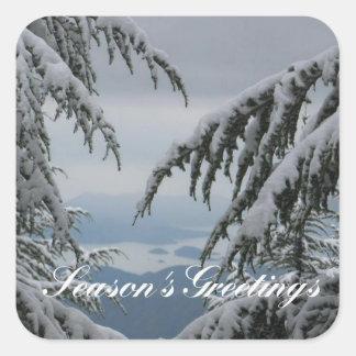 Pine Trees and Snow - Season's Greetings Square Sticker