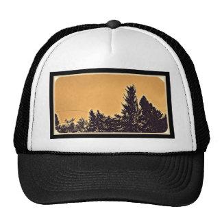 Pine Trees in Denver, CO Trucker Hat