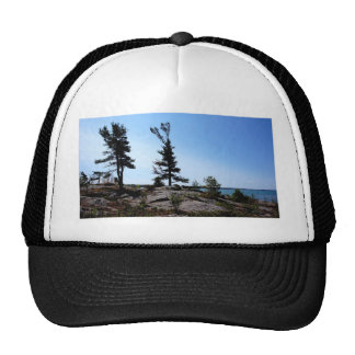 Pine trees on rocks at north channel trucker hat