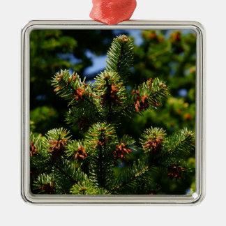 Pine trees Silver-Colored square ornament
