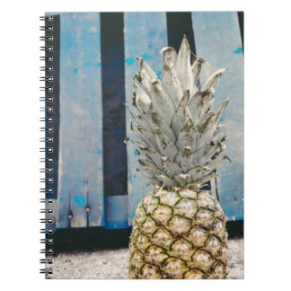 Pineapple By The Beach Notebook