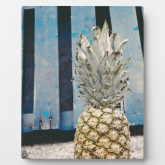 Pineapple By The Beach Plaque