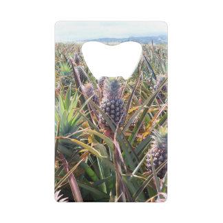 Pineapple Field Bottle Opener Credit Card Bottle Opener