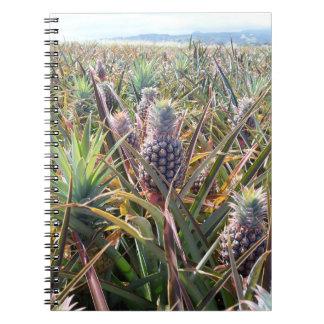 Pineapple Field Notebook