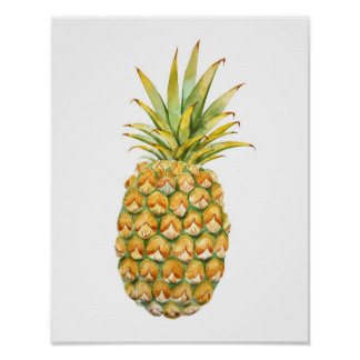 Pineapple Illustration Poster