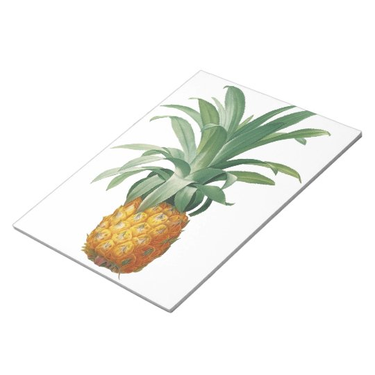 Pineapple Notepads