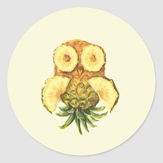 Pineapple owl classic round sticker