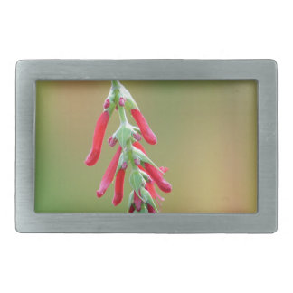 Pineapple Sage Bloom Rectangular Belt Buckles