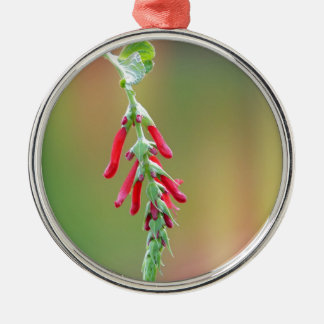 Pineapple Sage Bloom Silver-Colored Round Ornament