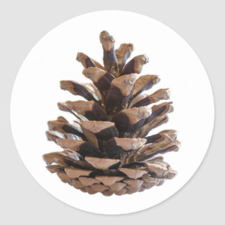Pinecone Classic Round Sticker