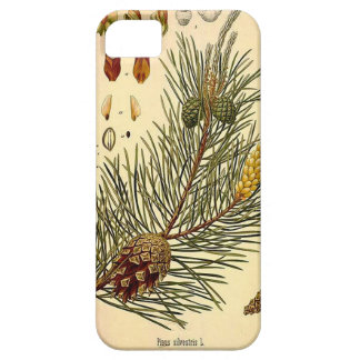 Pinecone Pine Tree Vintage Botanical Print Case For The iPhone 5