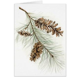 Pinecones Card