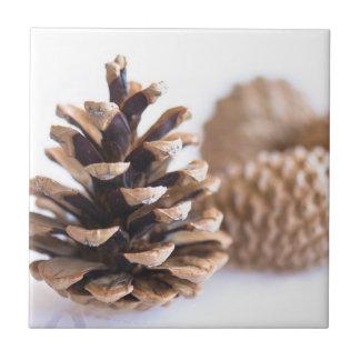 Pinecones Ceramic Tiles