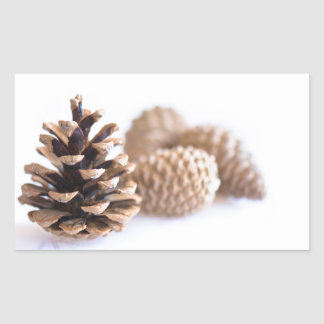 Pinecones Sticker