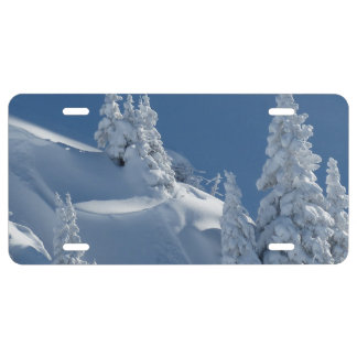 Pines Covered with Snow License Plate
